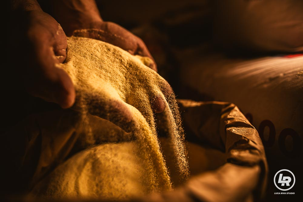 farine di grano